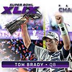 2015 Panini Super Bowl XLIX Football Cards
