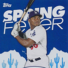 2015 Topps Spring Fever Baseball Cards