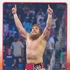2015 Topps WWE Wrestling Cards