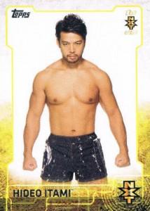 2015 Topps WWE Wrestling Cards 30