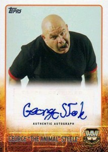 2015 Topps WWE Autographs Gallery - Is This the Deepest Lineup in Years? 12