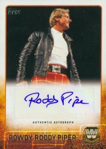 2015 Topps WWE Autographs Gallery - Is This the Deepest Lineup in Years? 16
