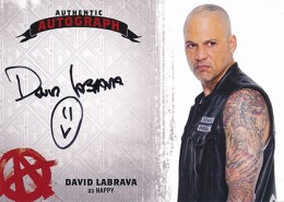 Sons of Anarchy Seasons 4 and 5 Autographs Guide 7