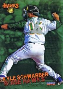 Top Kyle Schwarber Prospect Cards 8