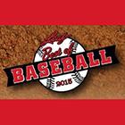 2015 Leaf Best of Baseball Cards