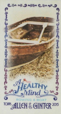 Unannounced 2015 Topps Allen & Ginter Mini Inserts Have a Healthy Focus 13