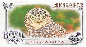 2015 Topps Allen & Ginter Baseball Birds of Prey Mini