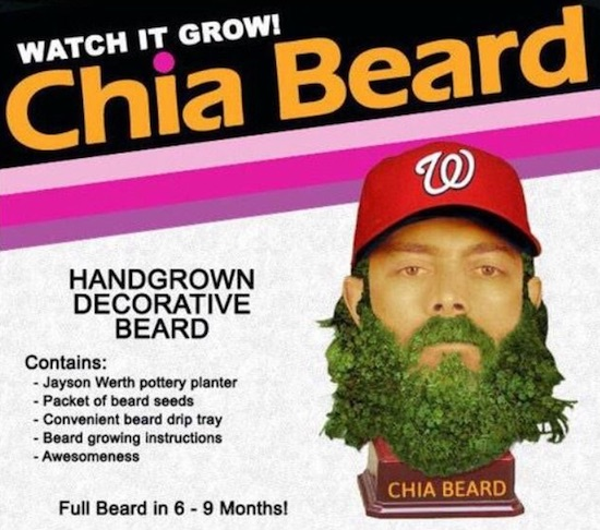 2015 Jayson Werth Chia Pet Beard ad