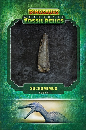 2015 Upper Deck Dinosaurs Authentic Fossil Relics