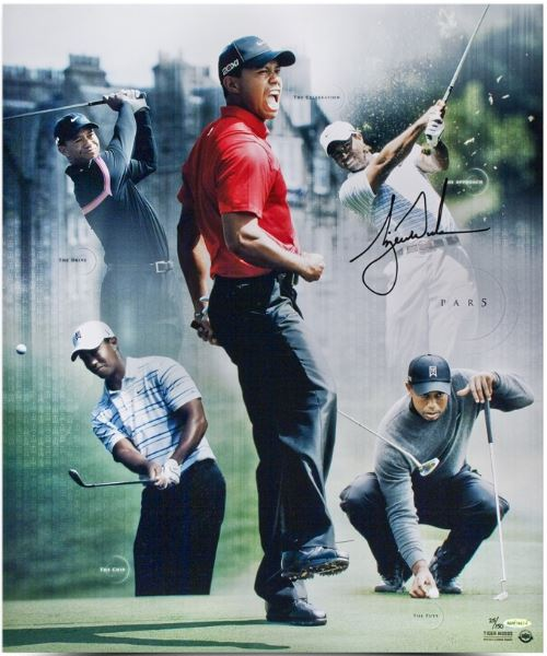 Tiger Woods Rookie Cards and Autographed Memorabilia Guide 28