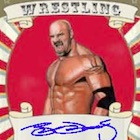 2016 Leaf Signature Series Wrestling Cards