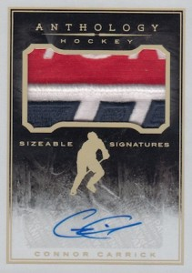 2015-16 Panini Anthology Hockey Sizeable Signatures Patch
