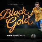 2016-17 Panini Black Gold Soccer Cards