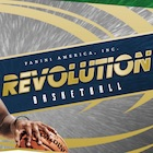 2016-17 Panini Revolution Basketball Cards