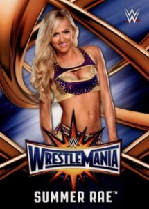 2017 Topps WWE Road to WrestleMania Trading Cards 30