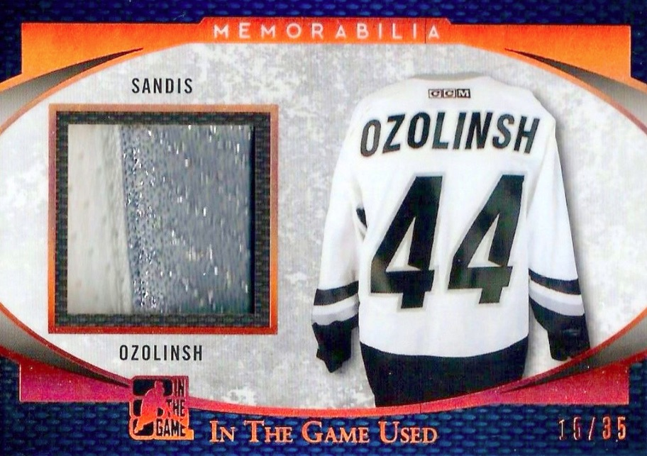2017 Leaf In The Game Used Hockey