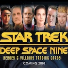 2018 Rittenhouse Star Trek Deep Space Nine Heroes & Villains Trading Cards