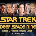 2018 Rittenhouse Star Trek Deep Space Nine Heroes & Villains Trading Cards