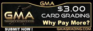 GMA 300×100