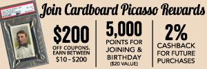Cardboard Picasso 300×100