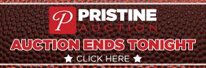 Pristine Auctions 300×100
