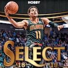 2018-19 Panini Select Basketball Cards