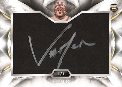 2019 Topps WWE Undisputed Wrestling Cards 6