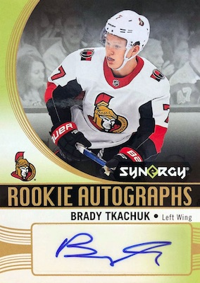 2018-19 Upper Deck Synergy Hockey Cards 5