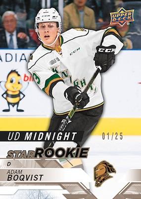 2cf81ab0e 2019 Upper Deck Spring Expo Promo Hockey Cards 2
