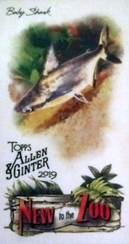 2019 Topps Allen & Ginter Baseball Cards 68