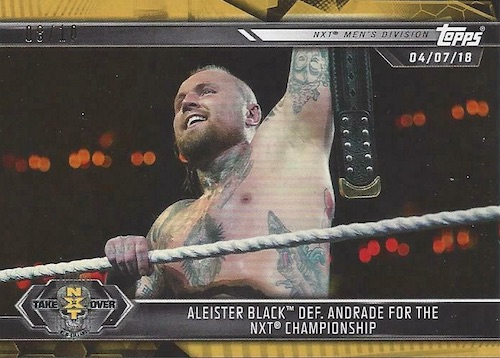 2019 Topps WWE NXT Wrestling Cards 29