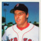 Top 10 Roger Clemens Baseball Cards