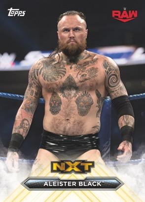2020 Topps WWE NXT Wrestling Cards 1