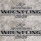 2020 Leaf Ultimate Wrestling Cards