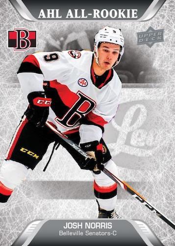 2020-21 Upper Deck AHL Hockey Cards 4