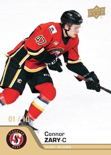 2020-21 Upper Deck AHL Hockey Cards 3