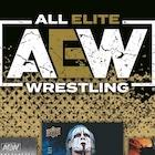 2021 Upper Deck AEW All Elite Wrestling Cards