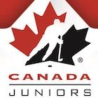 2021 Upper Deck Team Canada Juniors Hockey Cards